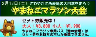 yamaneko2016