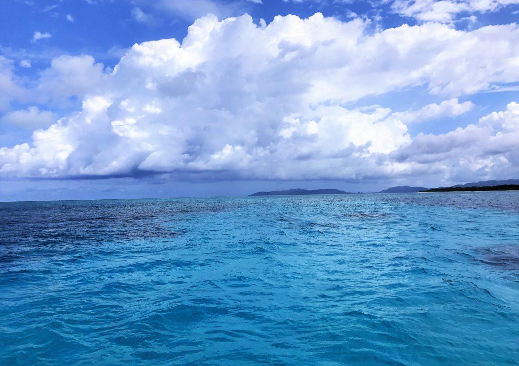 石垣島は亜熱帯気候に属し、年中温暖