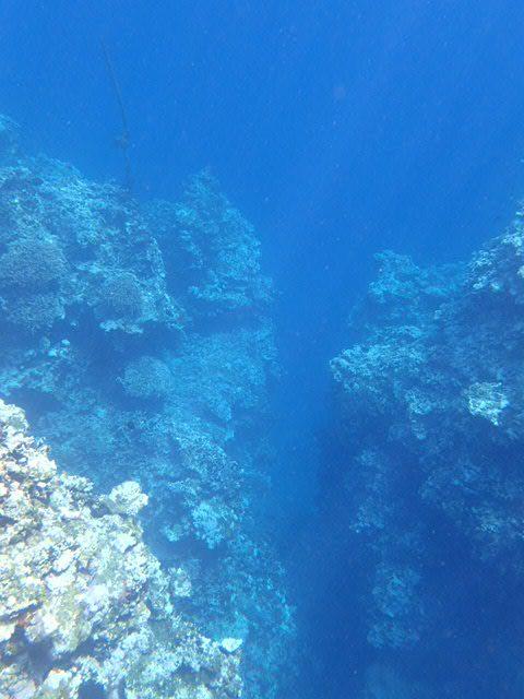 青の洞窟からのリーフ