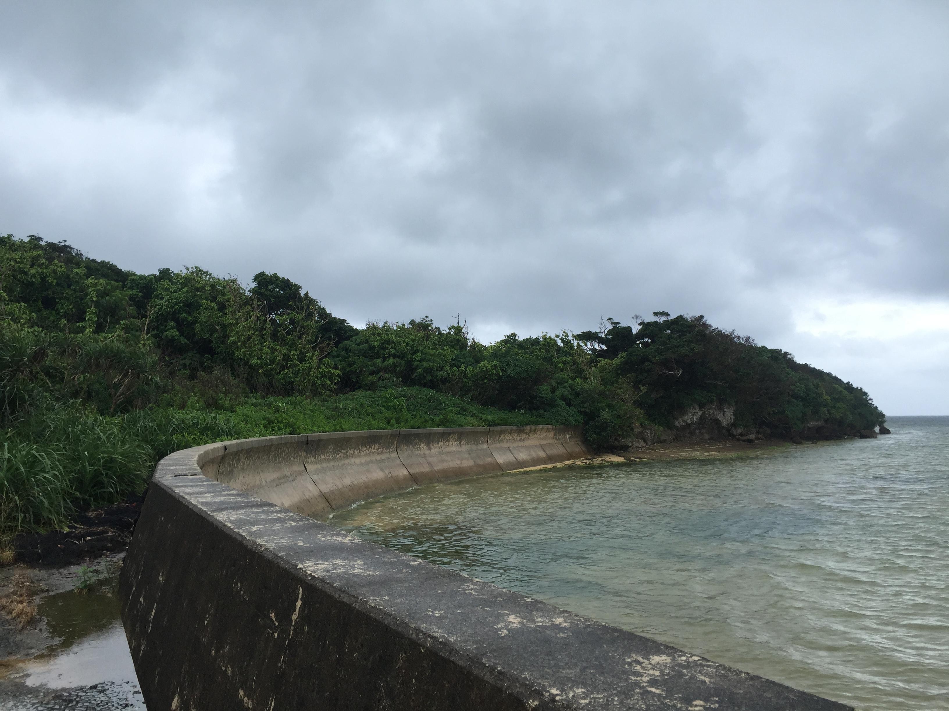 崎枝湾から伸びる活断層