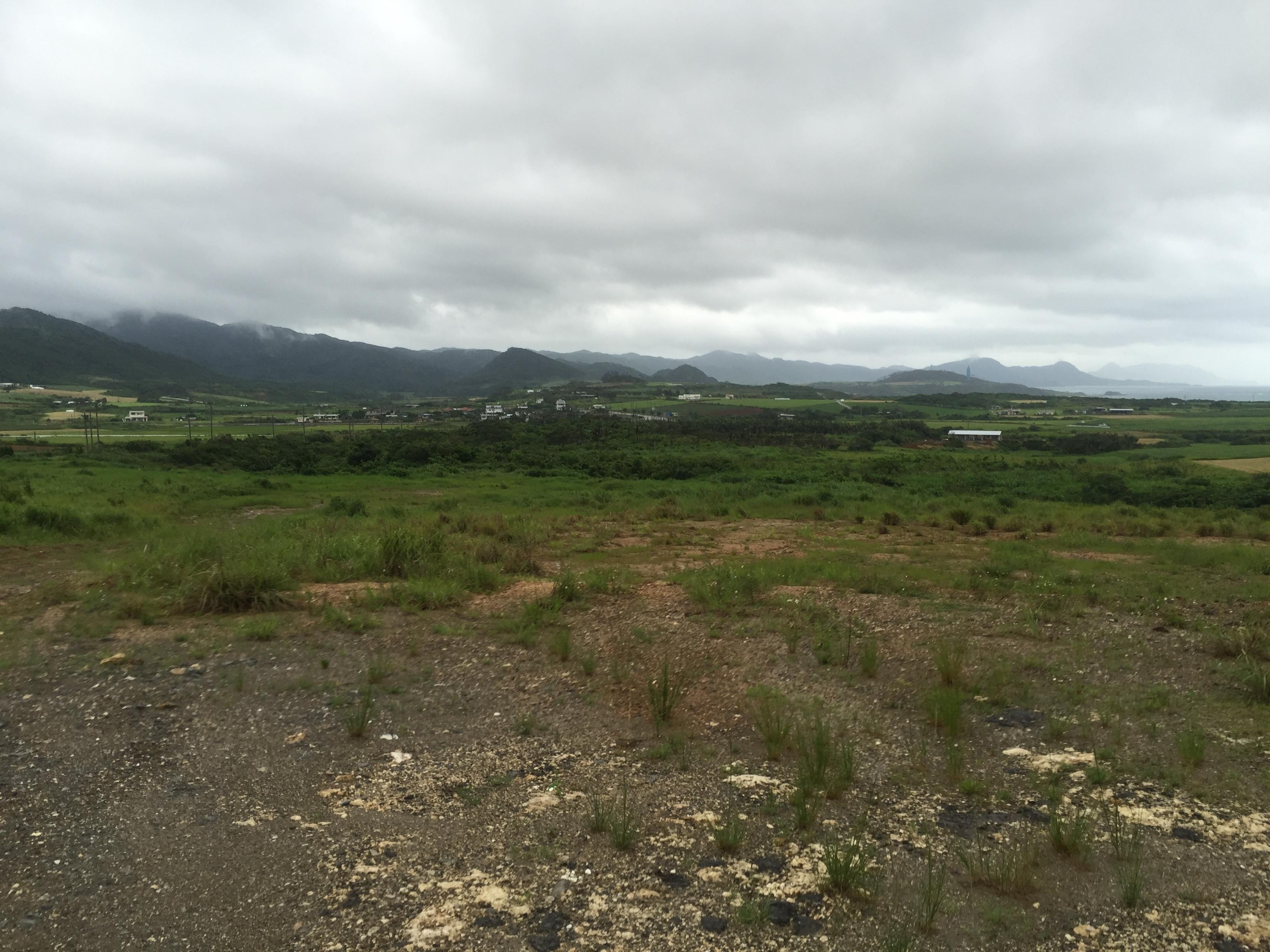伊野田付近の光景