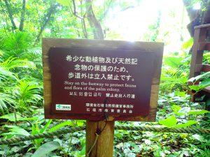八重山諸島は天然記念物