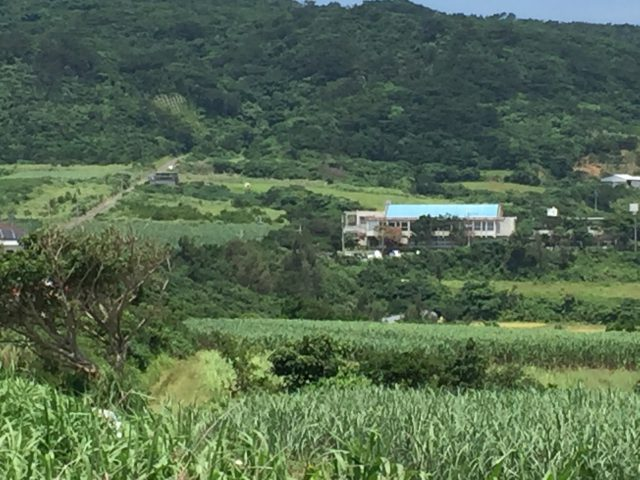 崎枝小学校の活断層