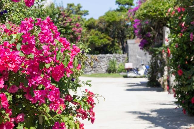 石垣島は意外と仕事の求人が豊富