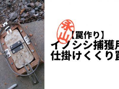 【罠作り】イノシシ捕獲用、仕掛けくくり罠