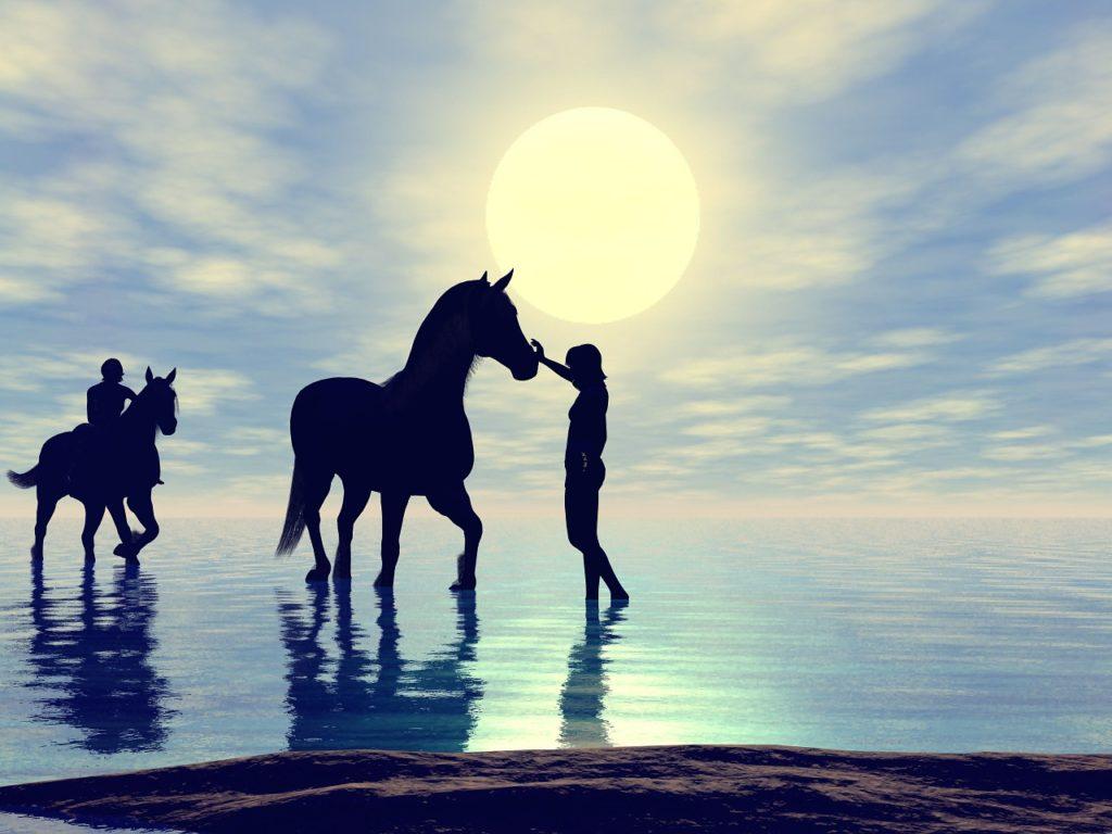 乗馬体験 遊びメニュー