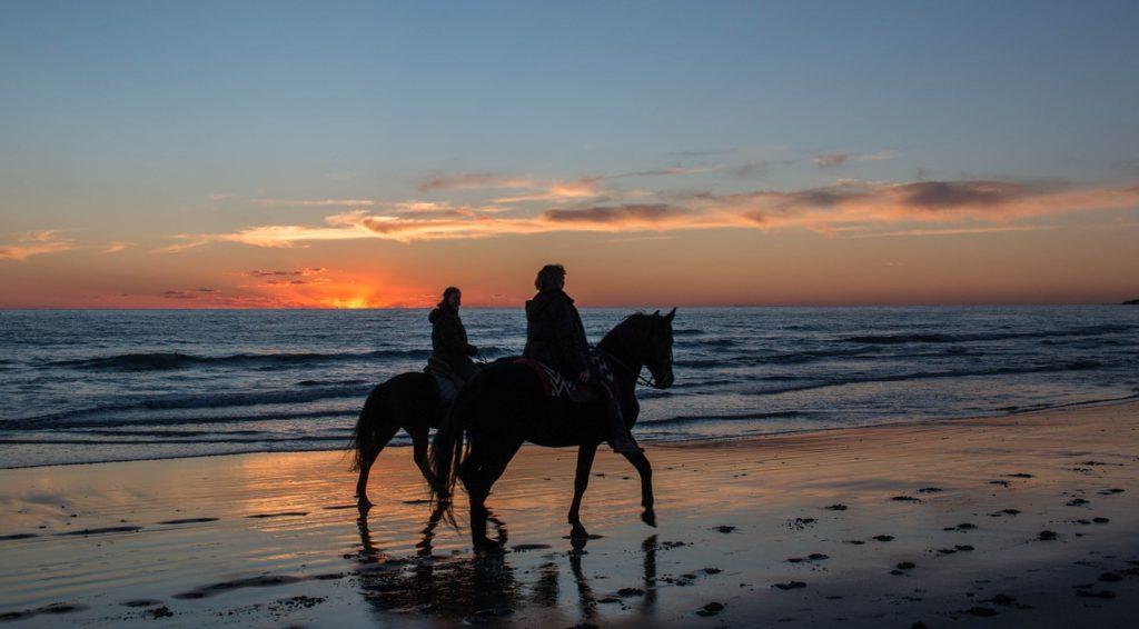 石垣島での乗馬